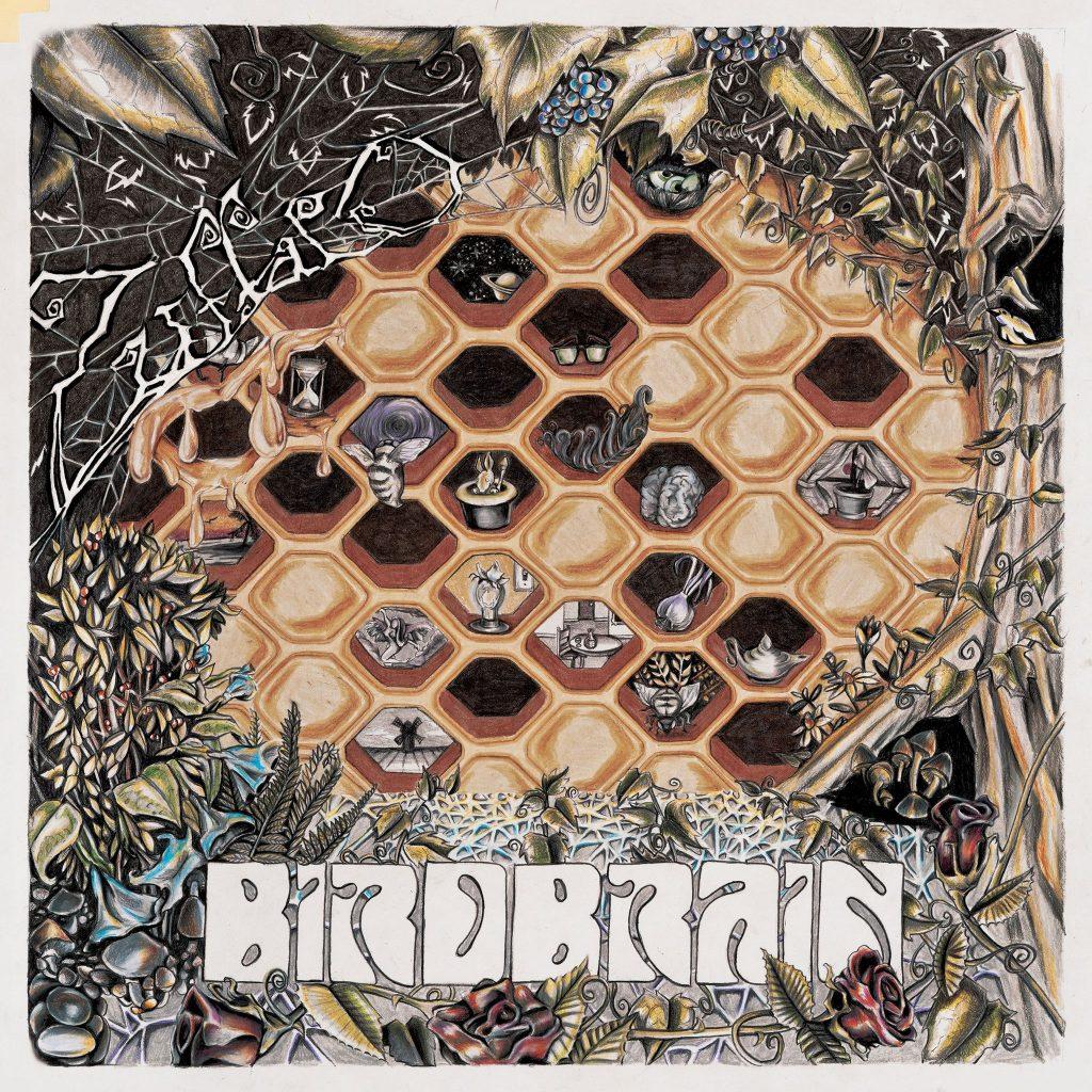 Cover of Birdbrain album